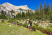 Hiker at Unicorn Creek under Unicorn Peak, Tuolumne Meadows, Yosemite National Park, California USA