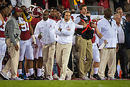 Nick Saban, head coach of the University of Alabama football team, during the national championship game at Raymond James stadium in Tampa.