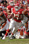 October 14, 2007 - Kansas City, MO..Running back Larry Johnson #27 of the Kansas City Chiefs rushed for 119-yards and a touchdown against the Cincinnati Bengals, during a NFL football game at Arrowhead Stadium in Kansas City, Missouri on October 14, 2007...FBN:  The Chiefs defeated the Bengals 27-20.  .Photo by Peter G. Aiken/Cal Sport Media