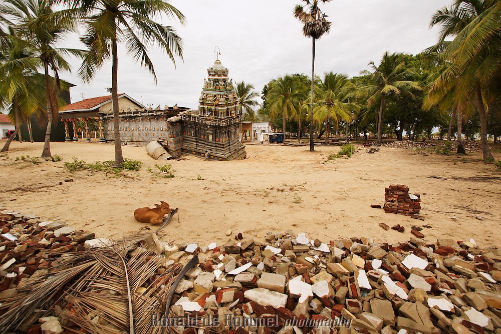 The Tsunami damaged hindu temple on the beach of Batticaloa.