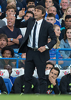 Football - 2016/2017 Premier League - Chelsea V West Ham United. <br /> <br /> Chelsea Manager Antonio Conte at Stamford Bridge.<br /> <br /> COLORSPORT/DANIEL BEARHAM