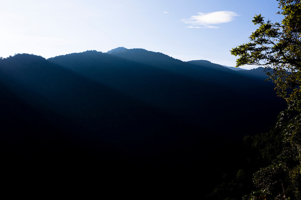 A view of the Arfak Mountains near Manokwari, Papua, Indonesia in the early morning, Sept. 11, 2008..Daniel Beltra/Greenpeace