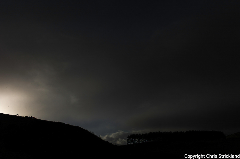 The Jedforest Hunt field are silhouetted on a hilltop while hunting on a stormy winters day.