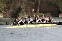 2012.02.25 Reading University Head 2012. The River Thames. Division 1. Molesey Boat Club IM1 8+