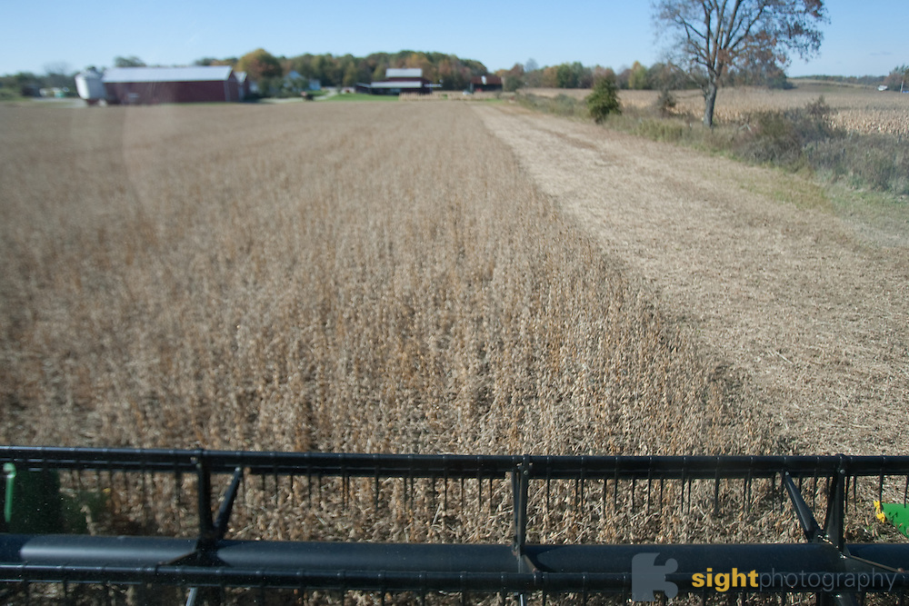 Soy beans are harvested for Renewable Lubricants, Inc. .Renewable LubricantsTM, Inc. (RLITM) manufactures ENVIRONMENTALLY RESPONSIBLE lubricant products that are formulated from renewable agricultural plant and animal resources..Photo by Bryan Rinnert/3Sight Photography.614-306-4620.photo@3sight.com