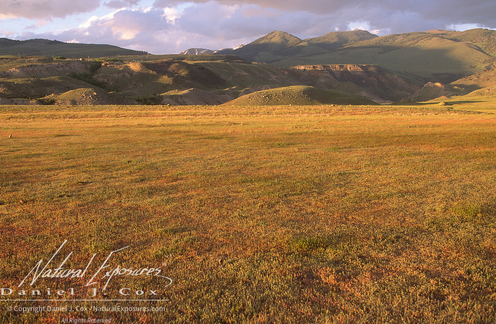 Prarie lands of Yellowstone National Park near Gardiner, Montana.