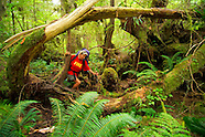 Hiking the Nootka Trail, Vancouver Island, British Columbia, Canada