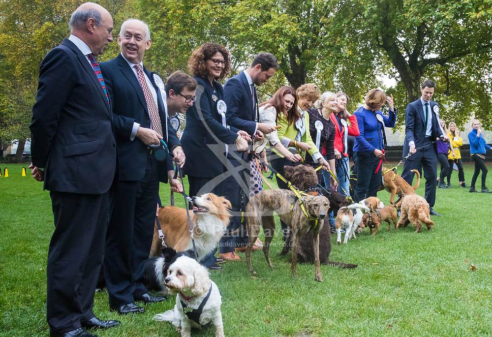 London, October 26 2017. The Paw-liamentary lineup in Victoria Tower Gardens at the annual Kennel Club and Dogs Trust Westminster Dog Of The Year competition that sees MPs and members of the House of Lords with their dogs as well as rescue dogs from the Dogs Trust. © Paul Davey
