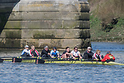 Mortlake/Chiswick, GREATER LONDON. United Kingdom. Barnes Bridge Ladies Rowing Club/Thames RC/Fredensborg<br /> RC (DK)/Mortlake AABC/Tideway Scullers School/Upper<br /> Thames Rowing Club, competing in the 2017 Vesta Veterans Head of the River Race, The Championship Course, Putney to Mortlake on the River Thames.<br /> <br /> <br /> Sunday  26/03/2017<br /> <br /> [Mandatory Credit; Peter SPURRIER/Intersport Images]