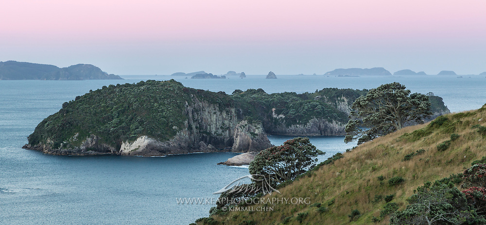 A pink sunset over Mahurangi Island Reserve and Te Tio Island, as viewed from Hereherataura Peninsula, Coromandel, New Zealand.