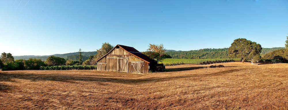Rivers Rest Vineyard, Philo, Anderson Valley, Mendocino County