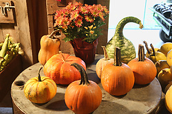 October 7, 2018 - Richmond Hill, ONTARIO, Canada - Gourds and pumpkins displayed during Pumpkinfest in Richmond Hill, Ontario, Canada, on October 7, 2018. Pumpkinfest took place during the Thanksgiving weekend and hundreds of people attended to celebrate the Autumn season. (Credit Image: © Creative Touch Imaging Ltd/NurPhoto/ZUMA Press)