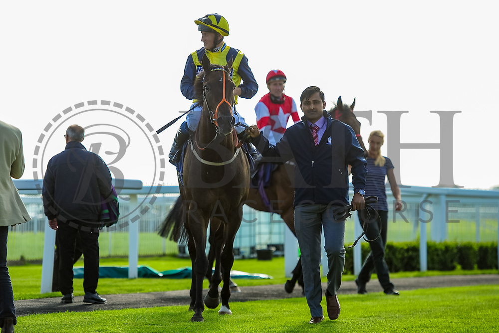 Kodiak Attack ridden by Tom Marquand and trained by Sylvester Kirk in the Aston Manor Cider Handicap (Class 5) race.  - Ryan Hiscott/JMP - 17/08/2019 - PR - Bath Racecourse - Bath, England - Race Meeting at Bath Racecourse