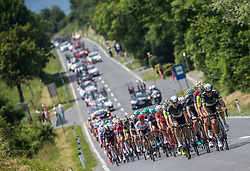Peloton near Razdrto during Stage 1 of 24th Tour of Slovenia 2017 / Tour de Slovenie from Koper to Kocevje (159,4 km) cycling race on June 15, 2017 in Slovenia. Photo by Vid Ponikvar / Sportida