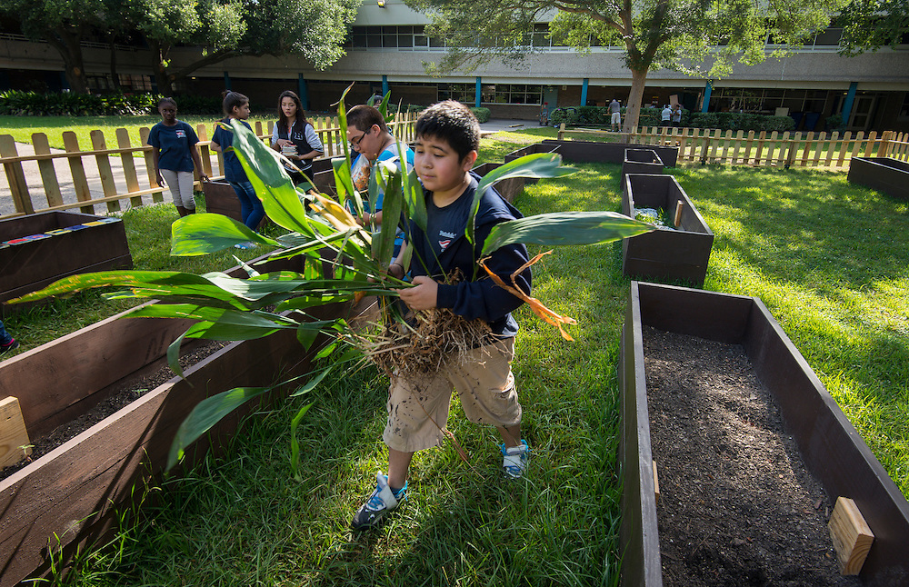 Seventh grade students build a garden at Patrick Henry Middle School, July 8, 2014.