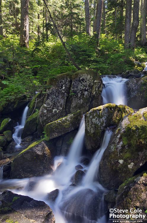 Embro Creek - Martin Creek Valley