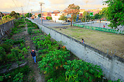 Osasco_SP, Brasil..Projeto Incubando empreendimentos populares, tecendo uma estrategia de desenvolvimento socioeconomico justo apoioados pela Prefeitura de Osasco, Sao Paulo. Na foto horta comunitaria...Popular Incubates project, creating a strategy for socio-economic development in the city of Osasco, Sao Paulo. In this photo a community garden...Foto: BRUNO MAGALHAES / NITRO.