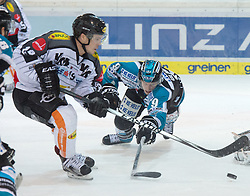 07.02.2016, Keine Sorgen Eisarena, Linz, AUT, EBEL, EHC Liwest Black Wings Linz vs Dornbirner Eishockey Club, Platzierungsrunde,im Bild Jason Ulmer (EHC Liwest Black Wings Linz) verteidigt gegen Dustin Sylvester (Dornbirner Eishockey Club) // during the Erste Bank Icehockey League 51th round match - placement round between EHC Liwest Black Wings Linz and Dornbirner Eishockey Club at the Keine Sorgen Icearena, Linz, Austria on 2016/02/07. EXPA Pictures © 2016, PhotoCredit: EXPA/ Reinhard Eisenbauer