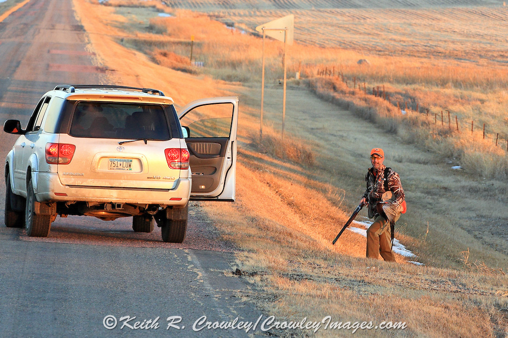 Hunting Roadside Ditches for pheasants in Eastern South Dakota