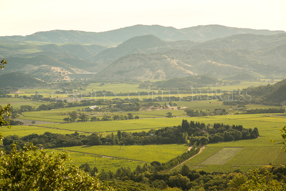 view of Oakville, California from Mount Veeder in Napa Valley.