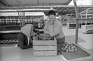 Tiraspol, 15/07/2004: mercato - market