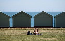 © Licensed to London News Pictures. 03/07/2018. Hove, UK. A woman sunbathing on grass behind beach huts on the seafront at Hove, East Sussex on the south coast of England, as a heatwave continues across the UK. Photo credit: Ben Cawthra/LNP