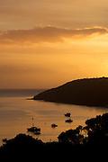 The morning sun renders Stewart Island's Halfmoon Bay in golden light.