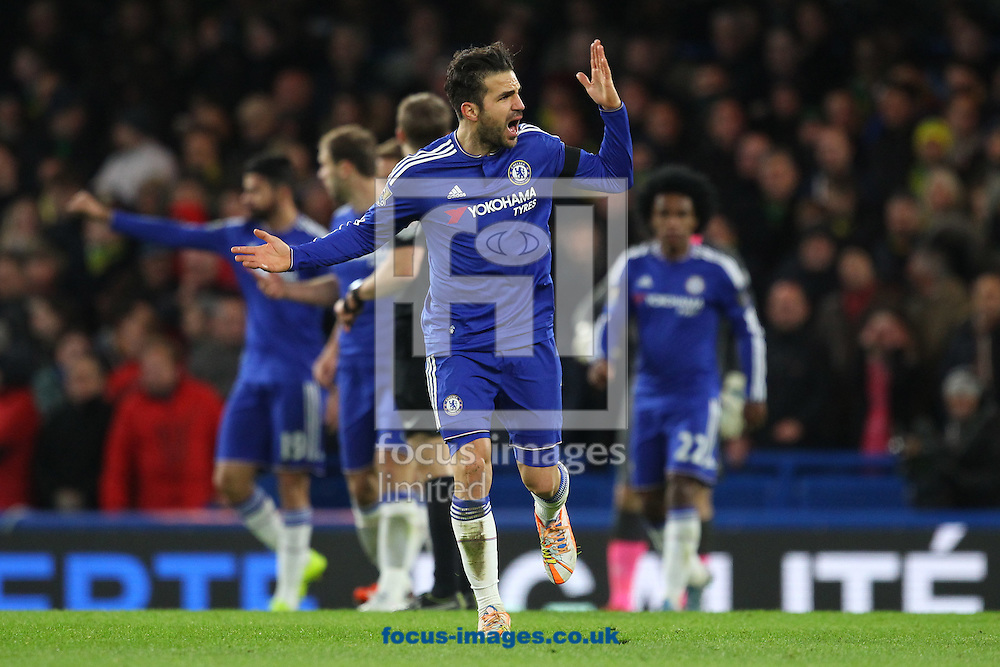 Cesc F&agrave;bregas of Chelsea urges the home crowd to get behind the team more during the Barclays Premier League match at Stamford Bridge, London<br /> Picture by Paul Chesterton/Focus Images Ltd +44 7904 640267<br /> 21/11/2015