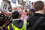 Anti Israel protest, London, 17/01/09: There were a couple of skirmishes in the crowd