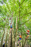 Henham Park, Suffolk, 21 July 2019. Children learn to climb trees and other objects in the Greenpeace area - organised by the Great Big Tree Climbing Co.. The 2019 Latitude Festival.
