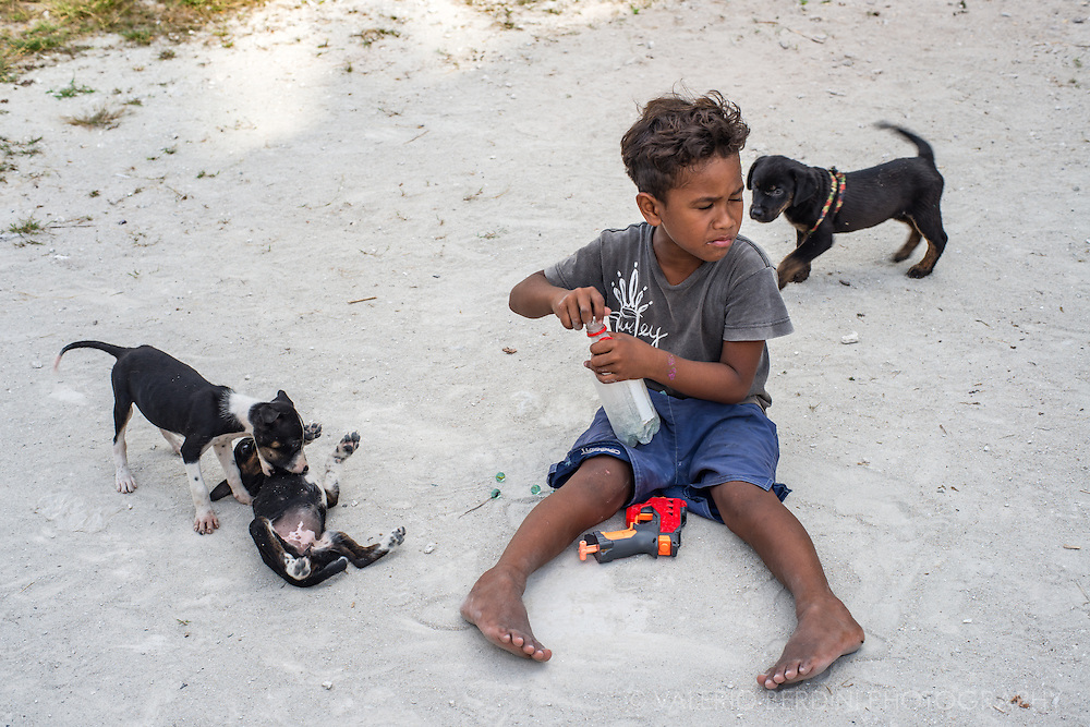 A little child playing with his water gun and his three puppies