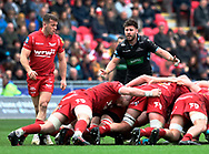 Glasgow Warriors' Ali Price protests at the scrum<br /> <br /> Photographer Simon King/Replay Images<br /> <br /> Guinness PRO14 Round 19 - Scarlets v Glasgow Warriors - Saturday 7th April 2018 - Parc Y Scarlets - Llanelli<br /> <br /> World Copyright © Replay Images . All rights reserved. info@replayimages.co.uk - http://replayimages.co.uk