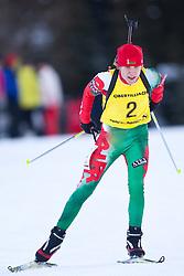 12.12.2010, Biathlonzentrum, Obertilliach, AUT, Biathlon Austriacup, Verfolgung Men, im Bild Aliaksandr Darozhka (BLR, #2). EXPA Pictures © 2010, PhotoCredit: EXPA/ J. Groder