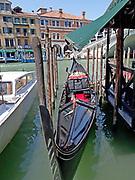 Venice Gondola in Canale Grande