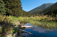 Flash Lake is a wild alpine lake as part of the chain of lakes along the Lightning Lakes group in Manning Park, BC