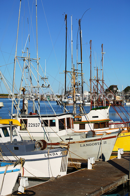 Boats Docked in the Marina at Morro Bay California