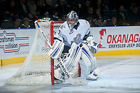 KELOWNA, CANADA - NOVEMBER 20: Patrik Polivka #33 of the Victoria Royals stands in net at the Kelowna Rockets on November 20, 2013 at Prospera Place in Kelowna, British Columbia, Canada.   (Photo by Marissa Baecker/Shoot the Breeze)  ***  Local Caption  ***