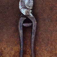 Pair of old well-used but maintained secateurs lying on rusty metal sheet