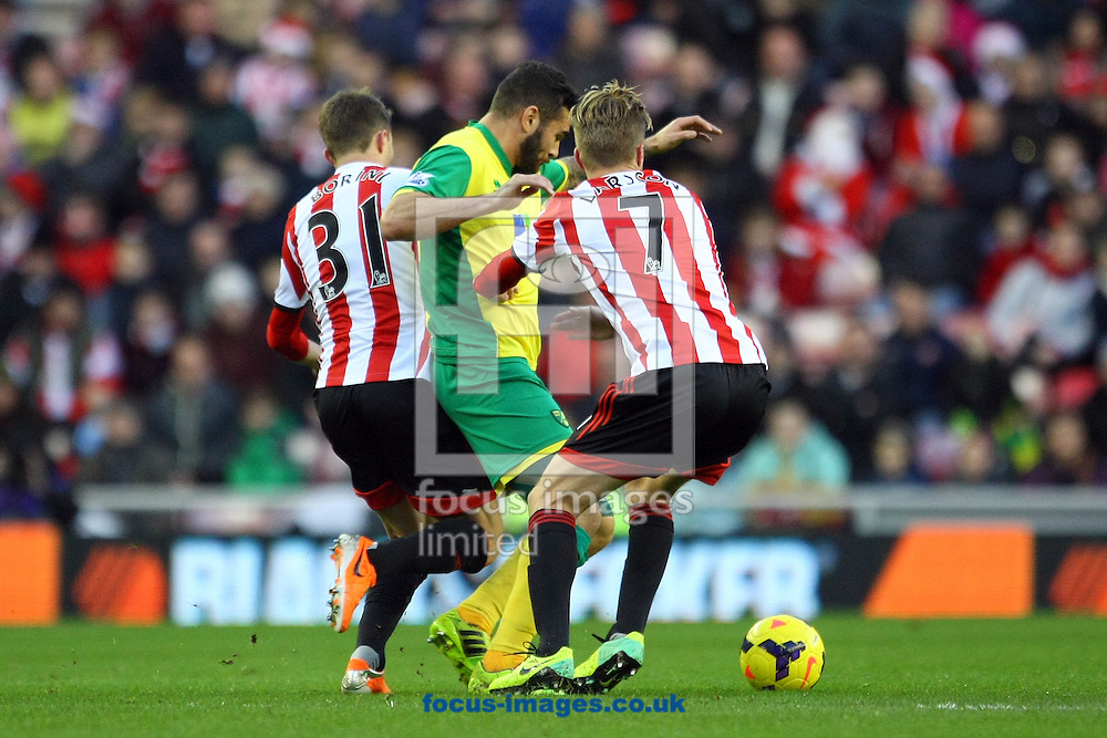 Picture by Paul Chesterton/Focus Images Ltd +44 7904 640267<br /> 21/12/2013<br />  in action during the Barclays Premier League match at the Stadium Of Light, Sunderland.