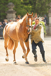 Andrew Nicholson (NZL) leads Nereo  for the vet's inspection during the trot up at the 2013 Mitsubishi Motors Badminton Horse Trials. Thursday 02  May  2013.  Badminton, Gloucs, UK..Photo by: Mark Chappell / i-Images