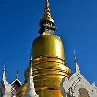 """Golden Chedi at Wat Suan Dok in Chiang Mai, Thailand <br /> Inside this 157 foot, golden chedi is a relic of Buddha that mysteriously self-replicated itself during the late 14th century. The Sri Lankan style stupa stands majestically in the center of Wat Suan Dok, a Buddhist temple that was founded in 1370.  Its name means """"Field of Flowers"""" because the grounds once contained a huge garden within its walled fortifications."""