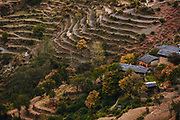 Terrace farming and Himalayan slate roofed houses in Bharmaur, Chamba, Himachal Pradesh, India