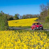 Car 19 Michael Ridley / Marjie Ridley