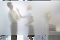 Female office worker arguing with male colleague behind translucent wall in office