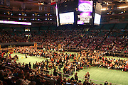 Atmosphere at The 132nd Westminster Dog Show held at Madison Square Garden on February 11th 2008