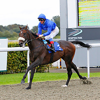 Kempton 24th September 2012