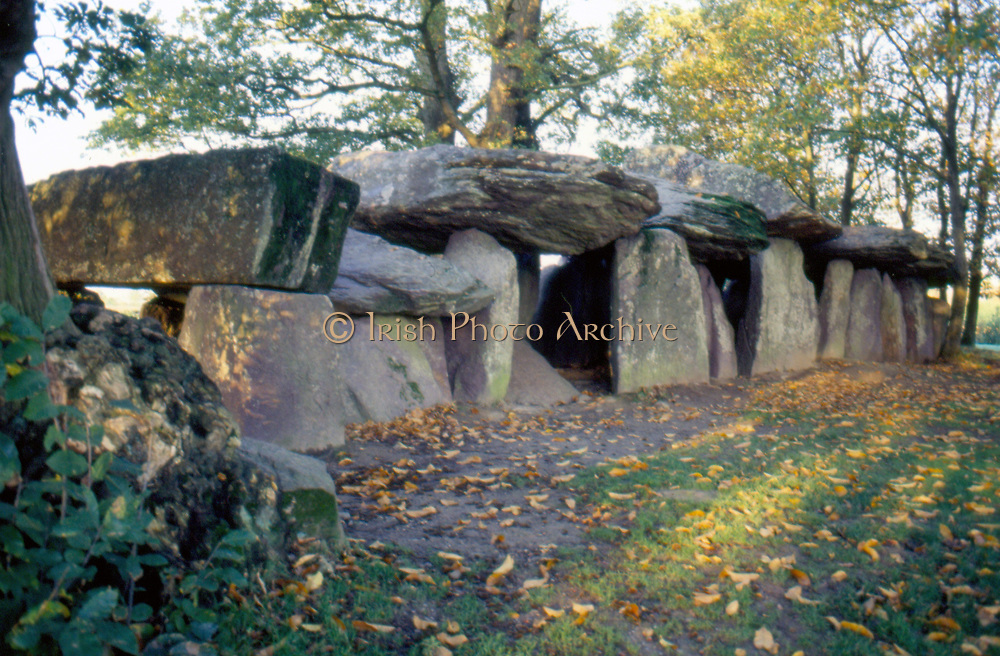 France, Brittany.  La Roche aux Fees.