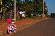 Carneirinho_MG, Brasil...Sao Sebastiao do Pontal em Carneirinho, Minas Gerais...Sao Sebastiao do Pontal in Carneirinho, Minas Gerais...Foto: LEO DRUMOND / NITRO