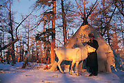 Tsaatan &amp; reindeer<br /> Nomadic tribe with +-200 individuals left who still live in teepees<br /> Taiga Forest<br /> Northern Mongolia