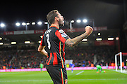 AFC Bournemouth defender Steve Cook celebrates the second goal scored by AFC Bournemouth forward Benik Afobe during the Barclays Premier League match between Bournemouth and Southampton at the Goldsands Stadium, Bournemouth, England on 1 March 2016. Photo by Graham Hunt.